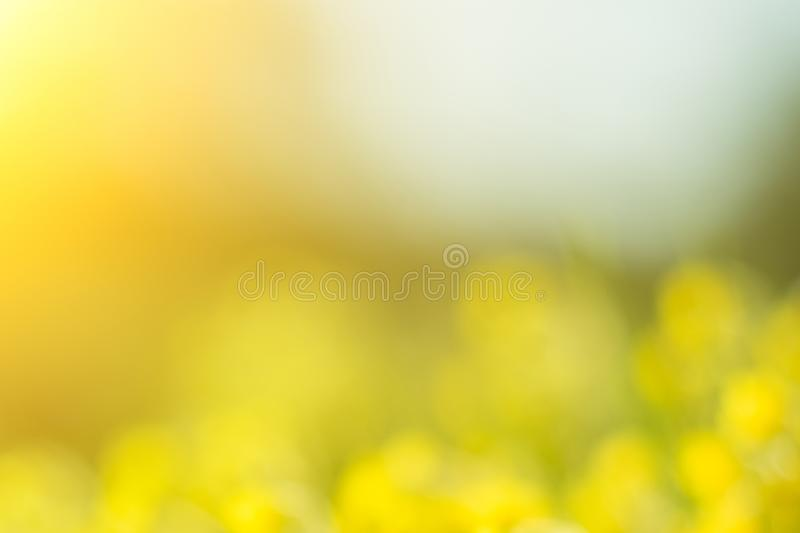 Wonderful yellow blurred background with sunlight. Bokeh.  royalty free stock photos