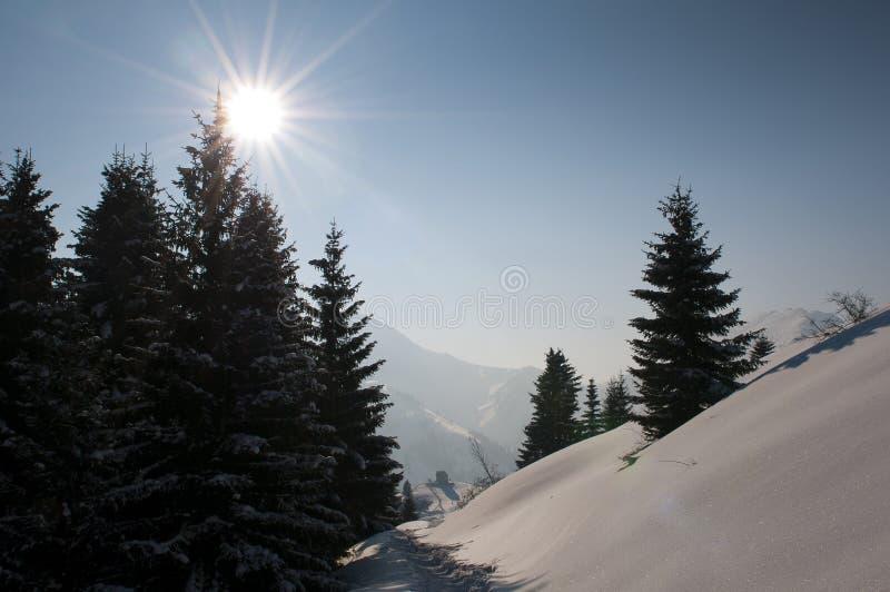 wonderfull för vinter för alpsdag tyrolean fotografering för bildbyråer