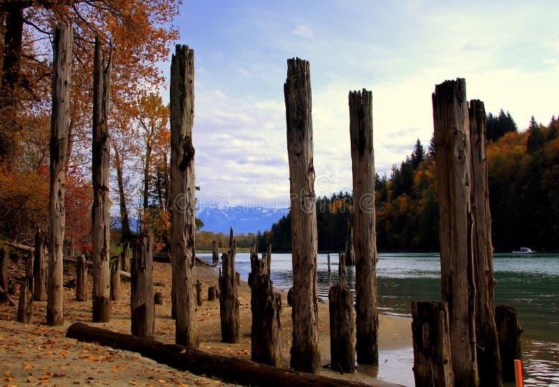 Wonderfull Harrison Lake in de Herfst, BC royalty-vrije stock afbeelding