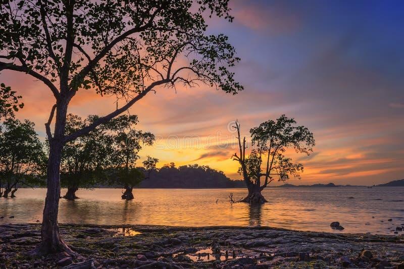 Wonderfull Indonesien för solnedgång Moment7 Batam Bintan fotografering för bildbyråer