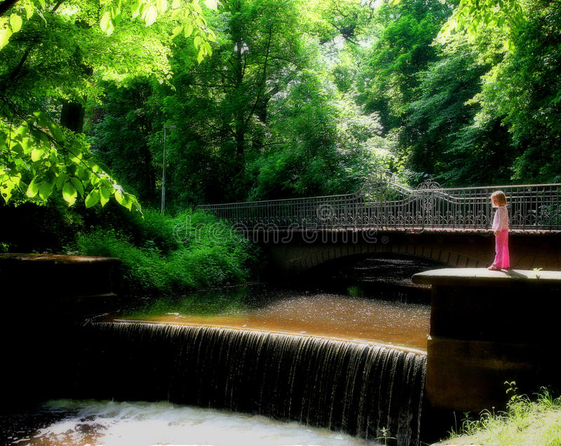 Download In wonderland (color) stock image. Image of trees, river - 21004743