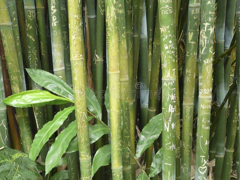 Wong Chuk Royal Bamboo Graffiti foto de archivo
