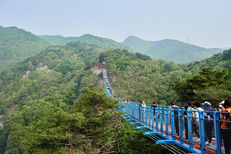 Wonju, Южная Корея - 1-ое мая 2018: Взгляд туристов проходя заново раскрытый мост Ganhyeon тряся стоковые фото