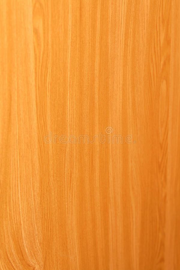 Free Wood Royalty Free Stock Photo - 11181335