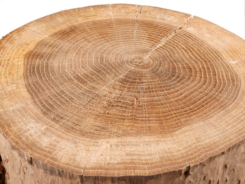 Download Wood stock image. Image of wood, materials, energy, tree - 28402925