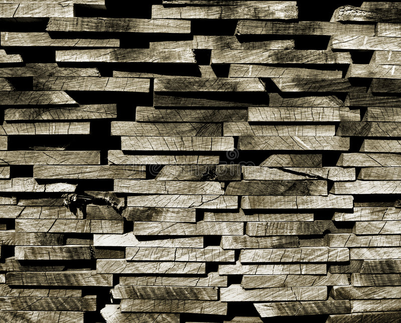 Download Wood stock photo. Image of background, annual, firewood - 6668646