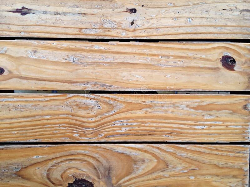 Wood absolut naturlig textur - - sörja royaltyfri bild
