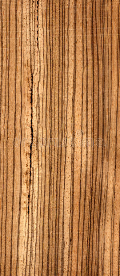 Wood african zebrawood stock image