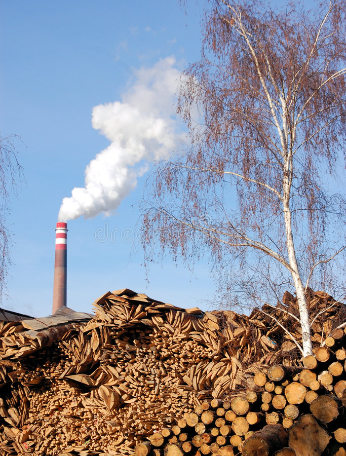 Free Wood And Biomass Plant Stock Image - 4204451