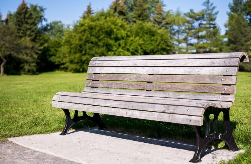 Wood bänk i en parkera på en solig dag royaltyfria bilder