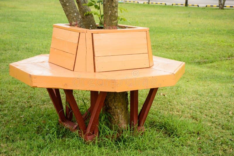 Wood bänk under trädet royaltyfri foto
