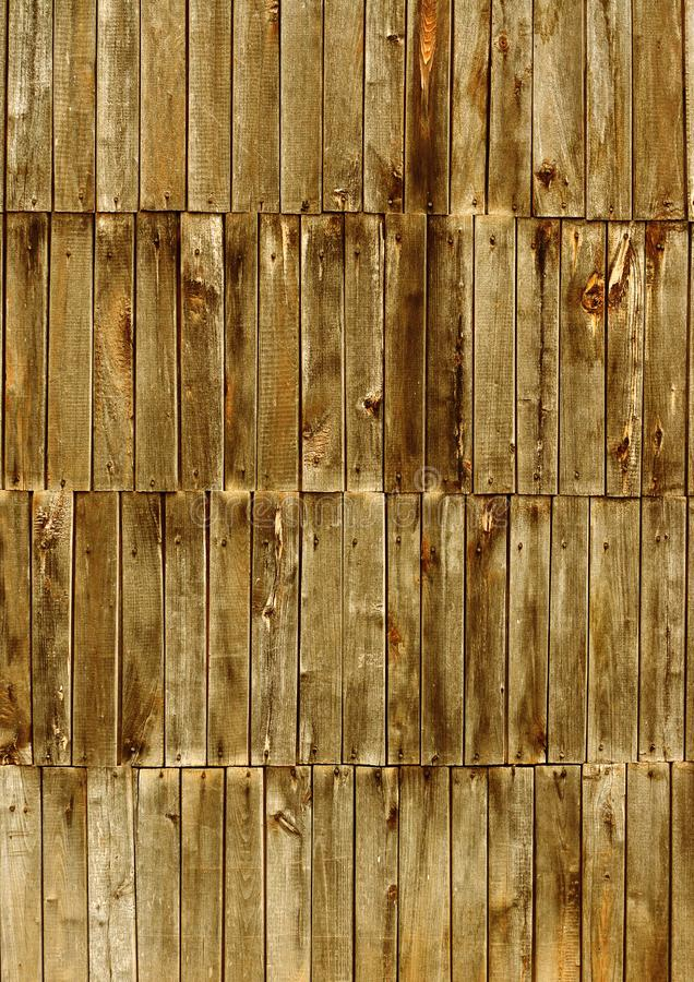 Download Wood Background stock image. Image of background, line - 8653577