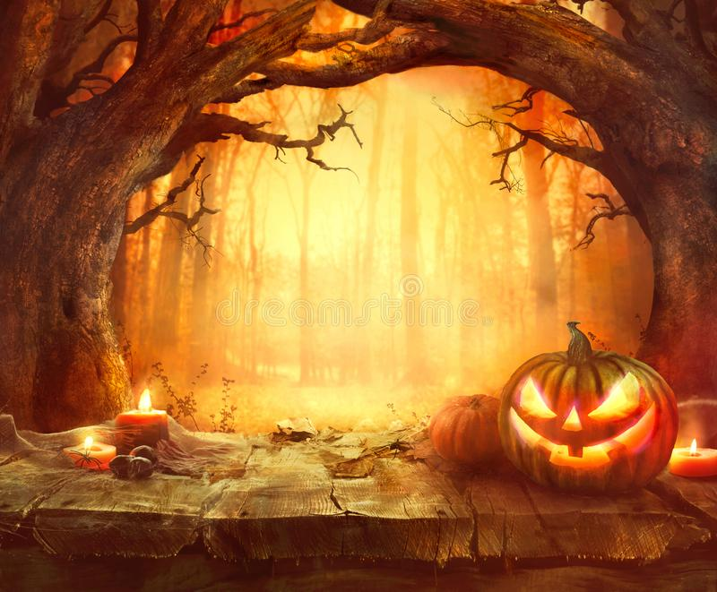 Wood background for Halloween. Halloween Pumpkin in Dark Forest. Halloween Background. Halloween
