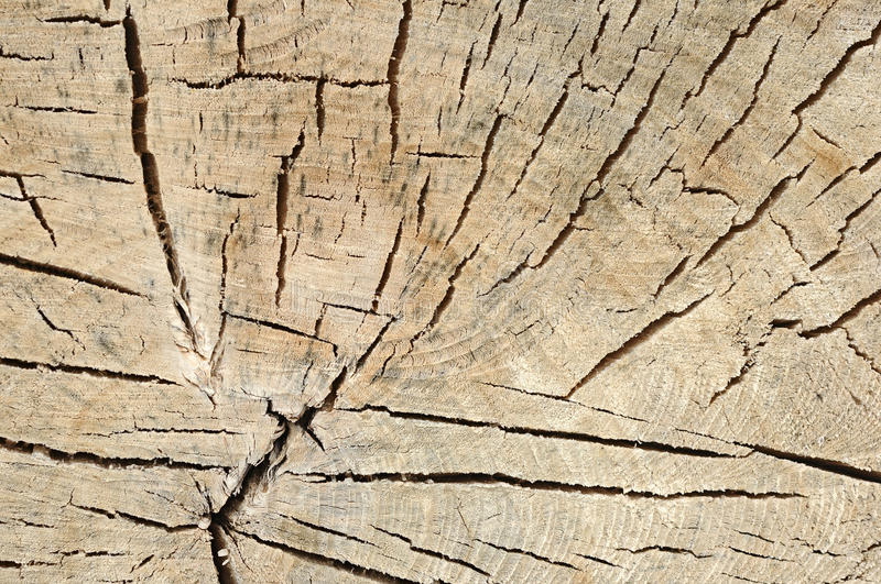 Wood Background. Royalty Free Stock Photography