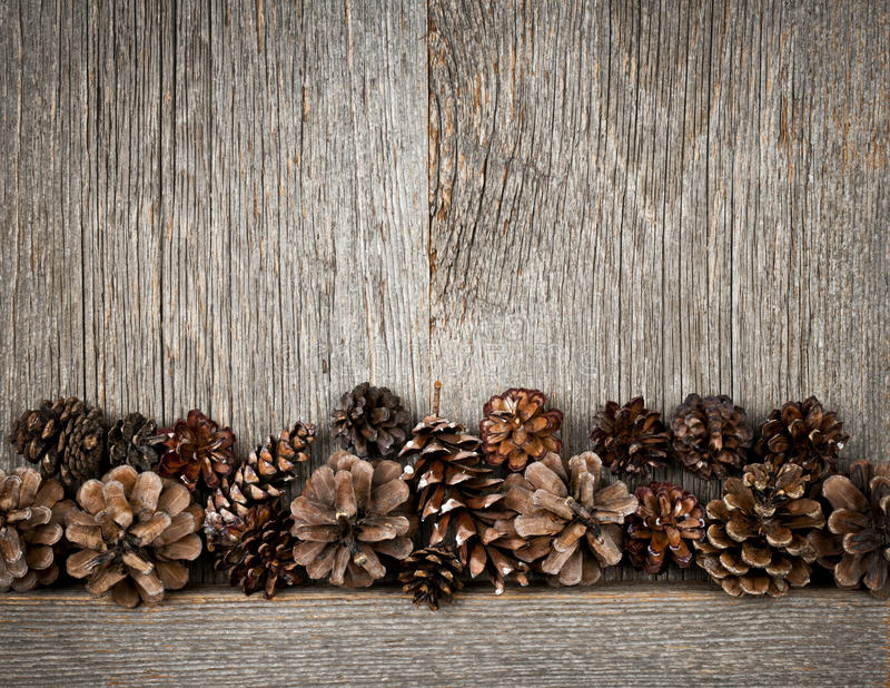 Download Wood Background With Pine Cones Stock Photo - Image: 28150962