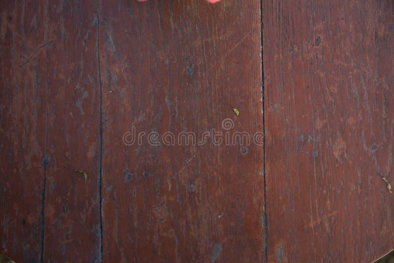 Wood background. Tandoori Chicken Pizza stock photo