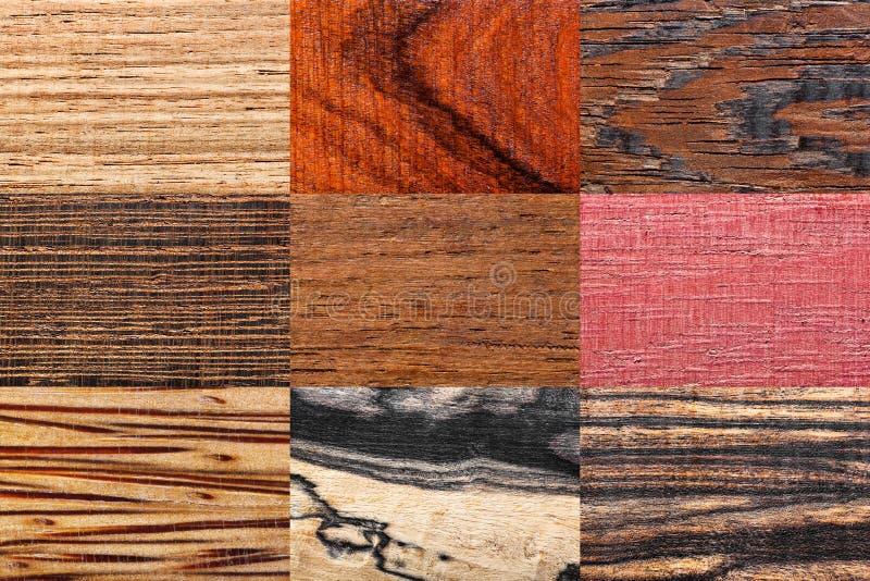 Wood backgrounds set stock photos
