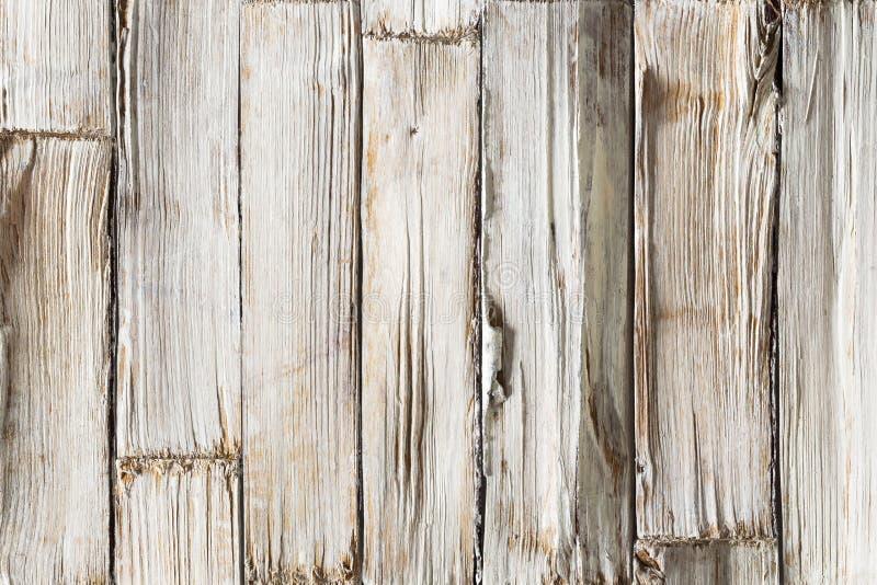 Wood bakgrund, vita träplankor textur, timmervägg royaltyfria foton
