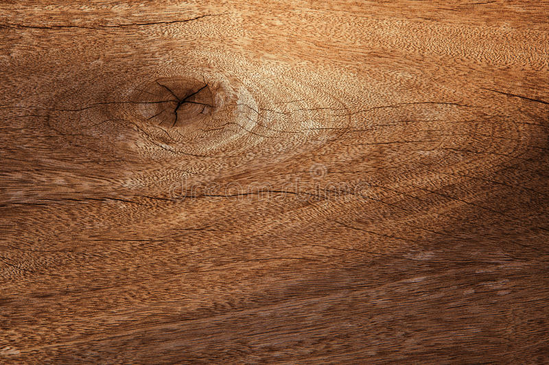 Wood bark texture use as natural background stock photo