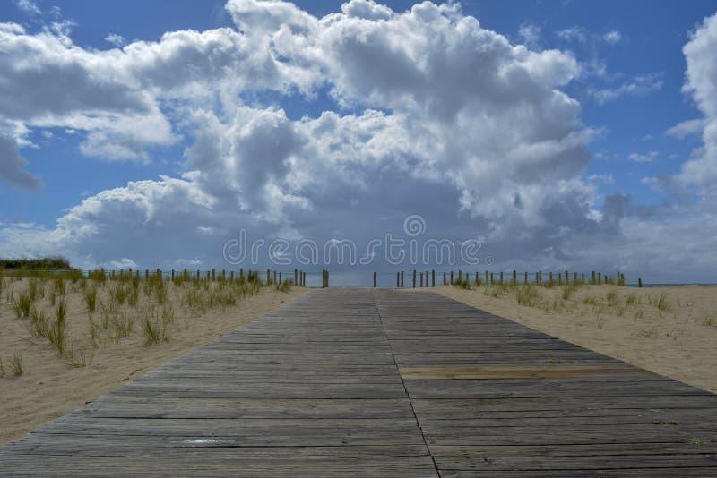Wood Beach Access stock photo