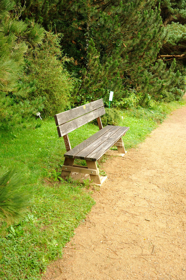 Download Wood bench stock photo. Image of scene, shade, backyard - 21158188