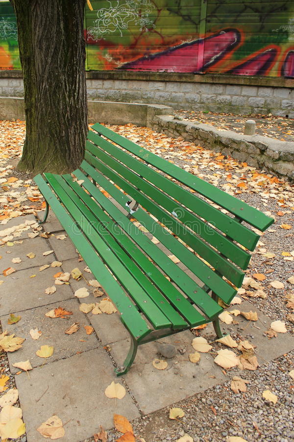Wood bench in autumn. Green wood bench in a park next to a trunk and graffities by autunm weather with lots of yellow leaves on the ground royalty free stock photo
