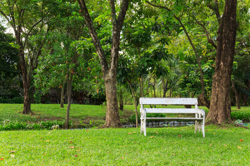 Download Wood Bench In Green Park Royalty Free Stock Photos - Image: 33120898