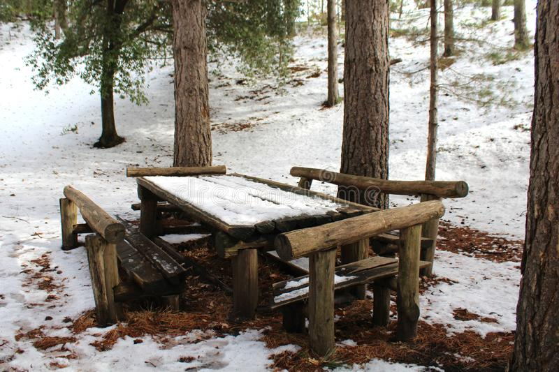Wood bench in the mount Etna`s park royalty free stock photo