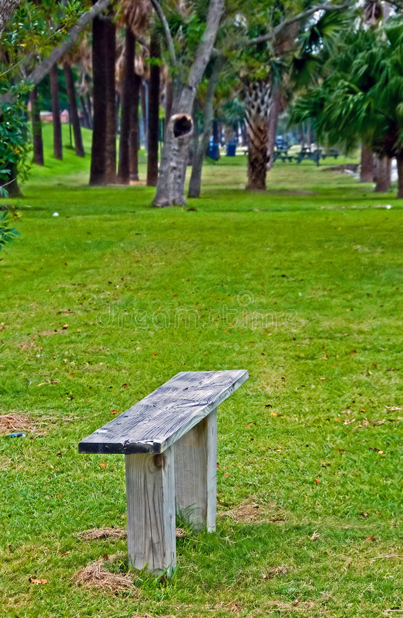 Wood bench in a park stock photo