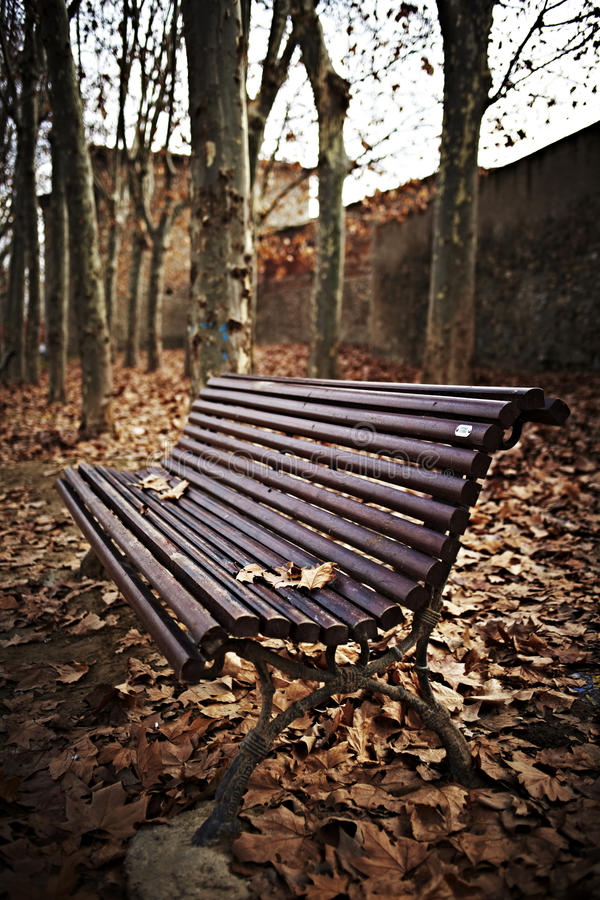 Free Wood Bench With Autumn Leaves Stock Photos - 18555553