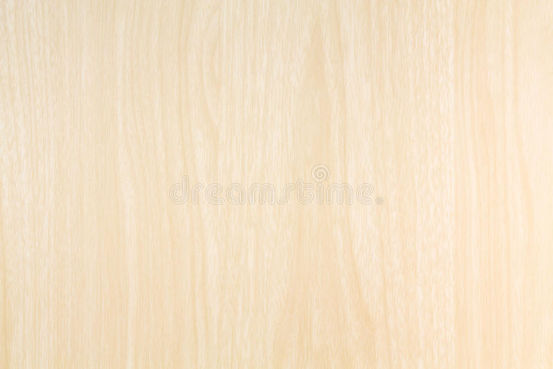 Wood blonde texture royalty free stock image