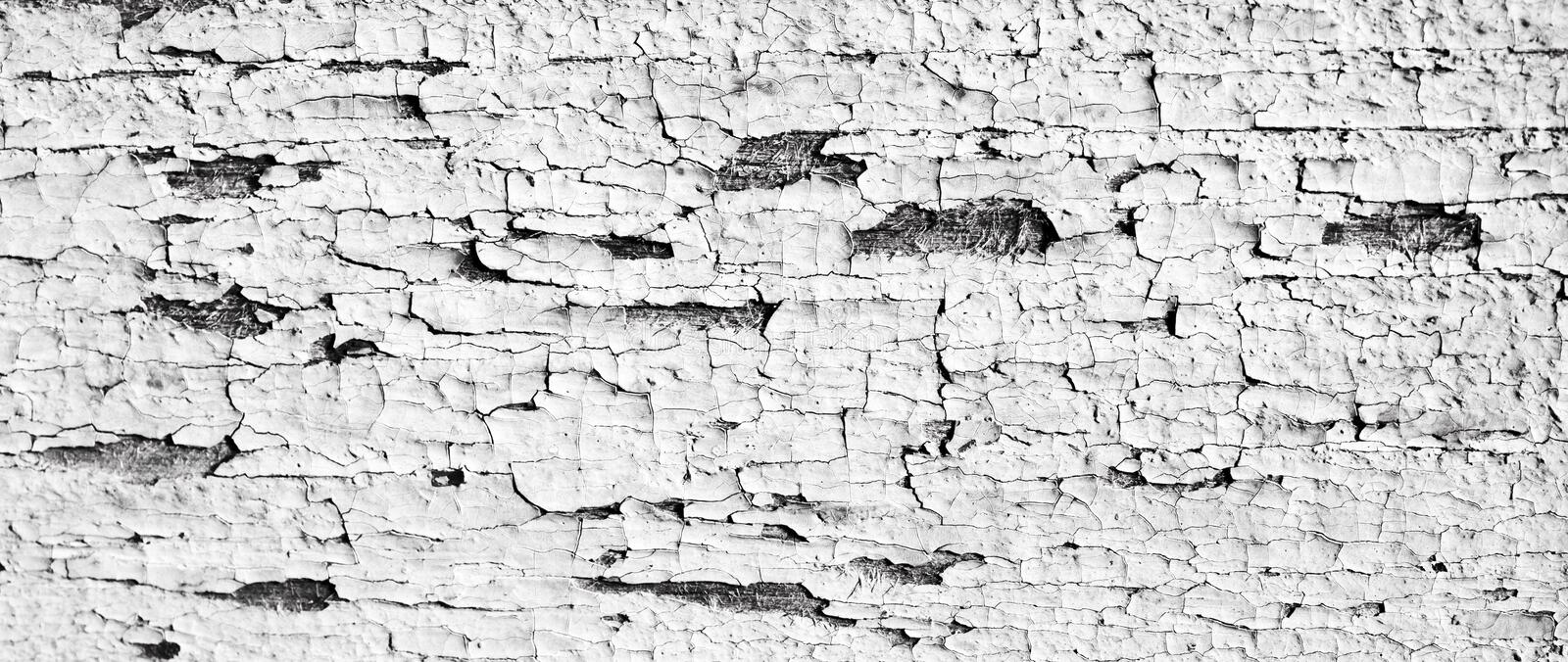 Wood board with peeling white paint. Old cracked timber, painted wooden background. stock images