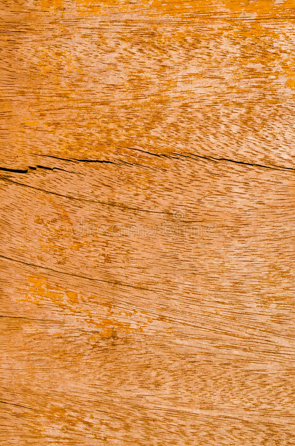 Download The Wood Board Or Texture Stock Photo - Image: 22866220