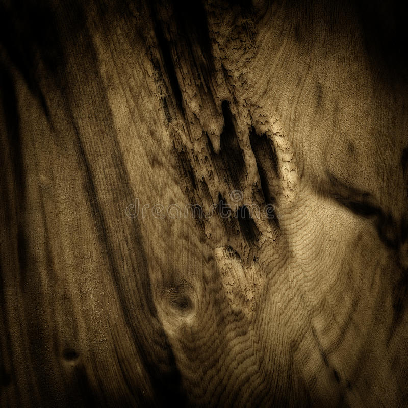 Wood board royalty free stock images