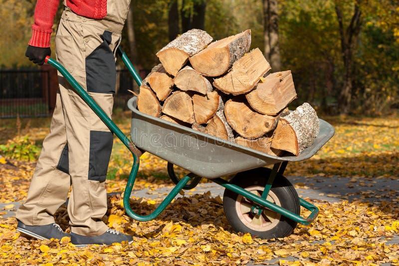 Wood on borrow. A man with a pile of wood logs on a borrow royalty free stock photos