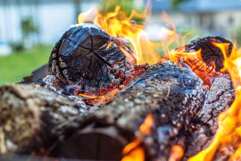 Wood brand som är förberedd för grillfest Flamma- och bränningkol royaltyfria foton