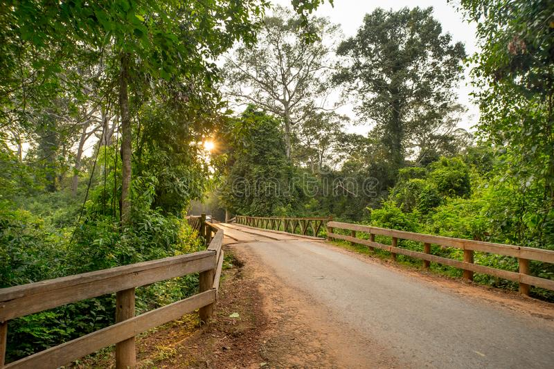 Wood bridge in the country road with star sun in the background stock images