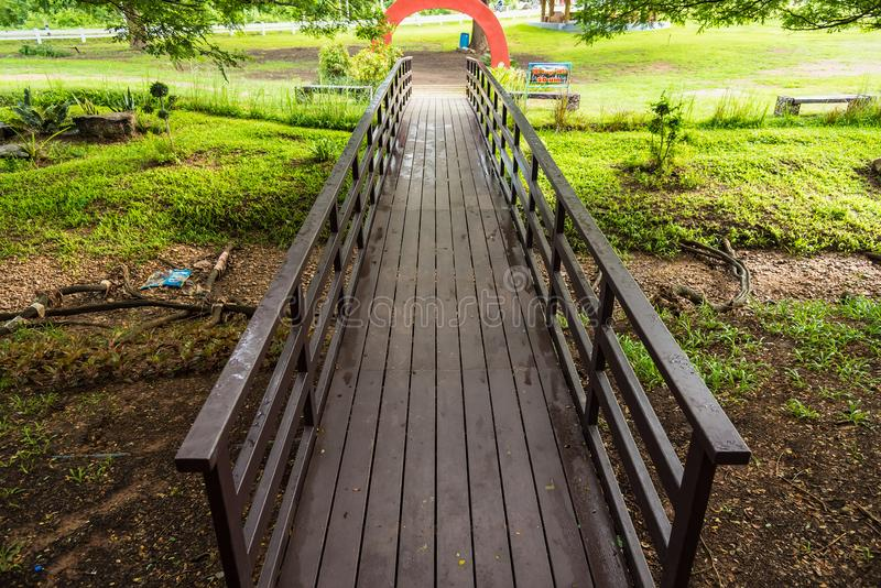 Wood bridge into the forest. Nature, outdoor, landscape, tree, wooden, park, green, water, natural, way, path, walkway, river, pathway, summer, travel, plant royalty free stock images