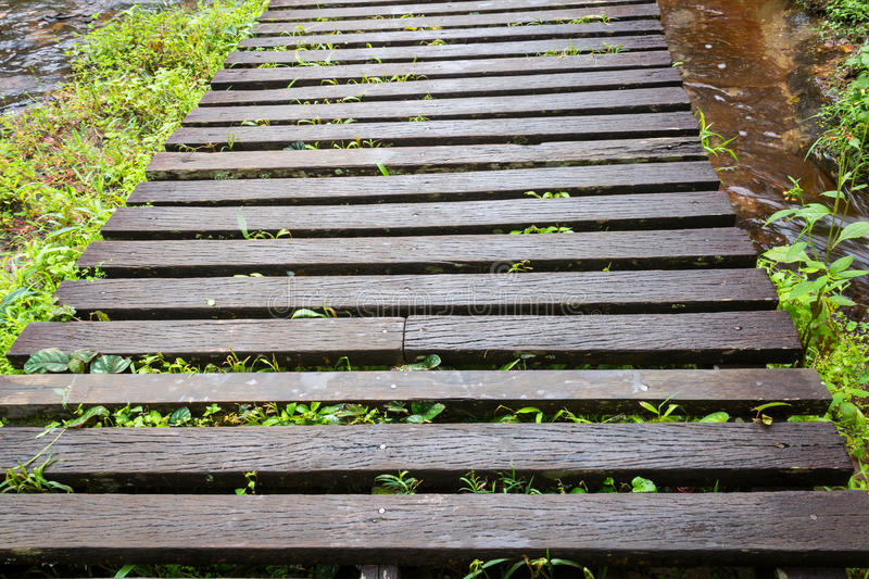 Wood bridge in the forest. On background stock photo