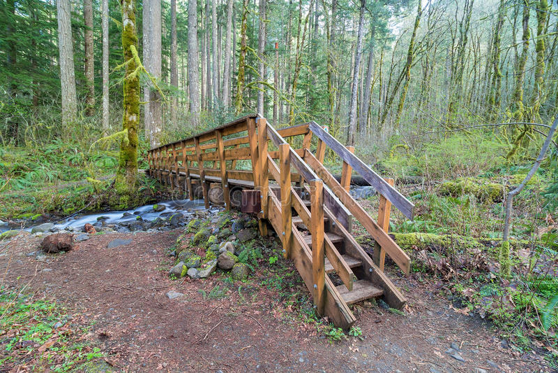 Wood bro över torr liten vik i Oregon arkivfoto
