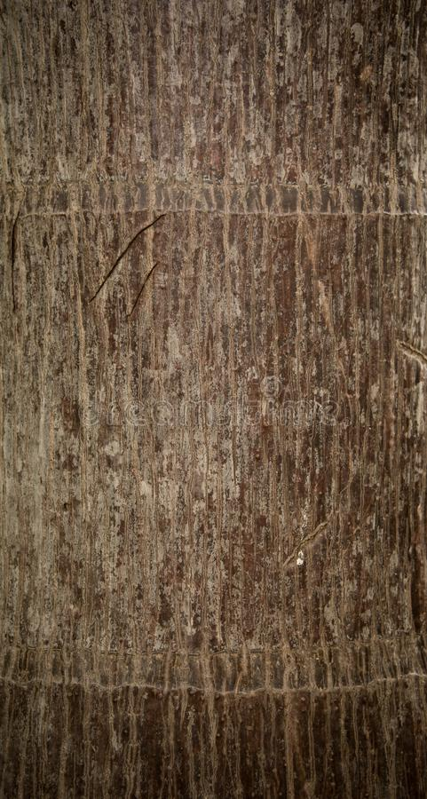 Wood, Brown, Wall, Pattern stock image