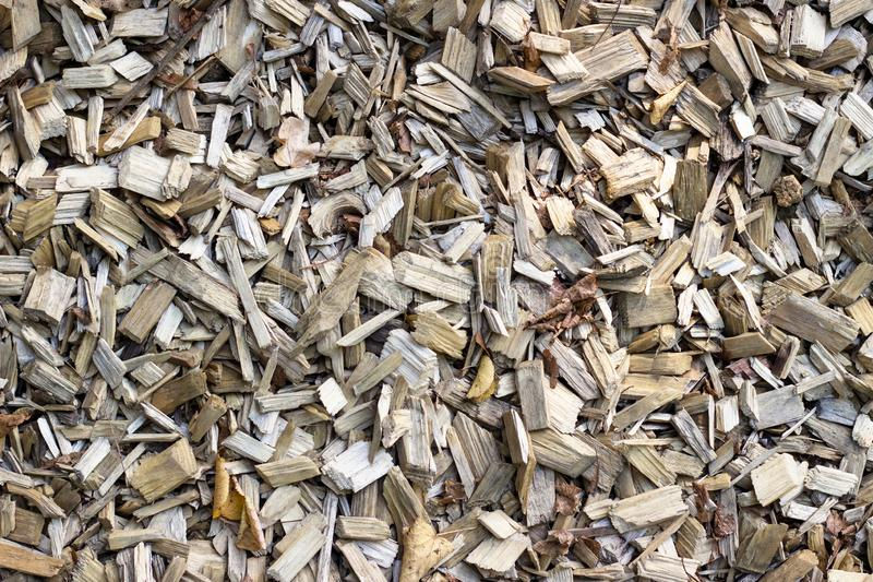 Wood chip. Recycled wood. Eco-friendly processing. Utilization of wood. stock photos