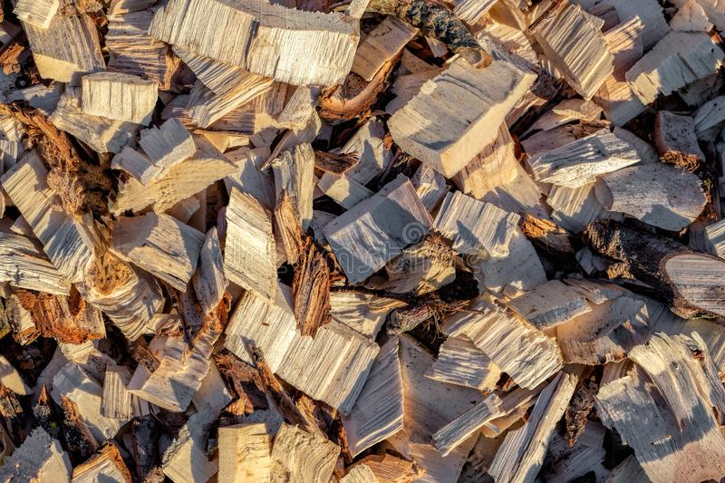 Wood chip. Recycled wood. Eco-friendly processing. stock photography