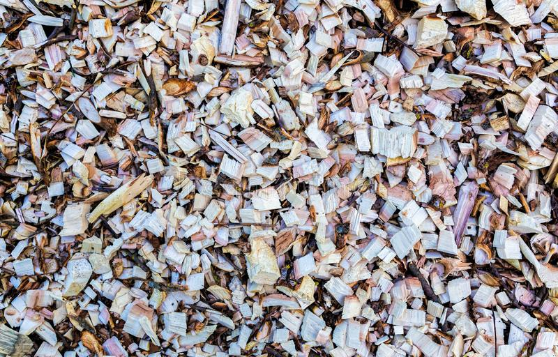 Wood chip. Recycled wood. Eco-friendly processing. royalty free stock photos