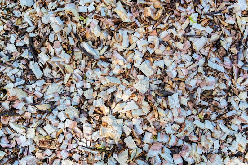 Wood chip. Recycled wood. Eco-friendly processing. stock image