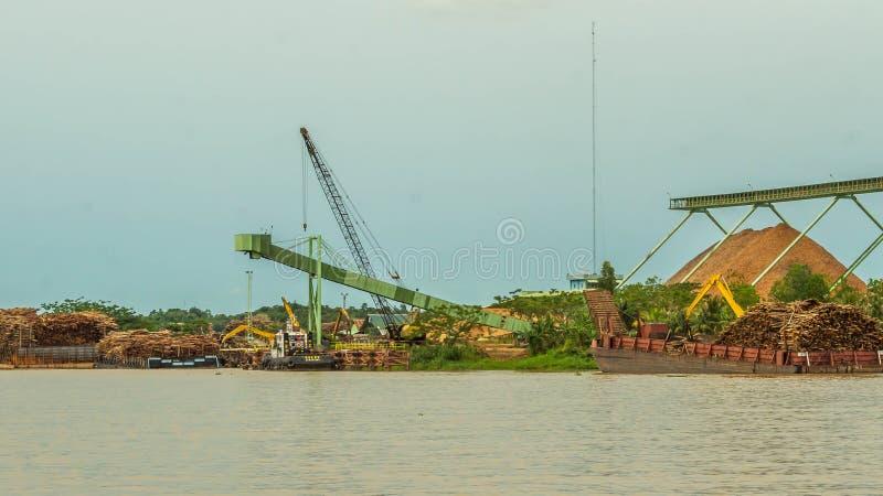 Wood chip stockpile factory on Mahakam riverbank. royalty free stock image
