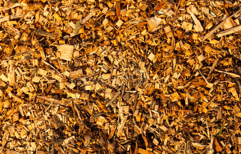 Wood Chippings stock photos