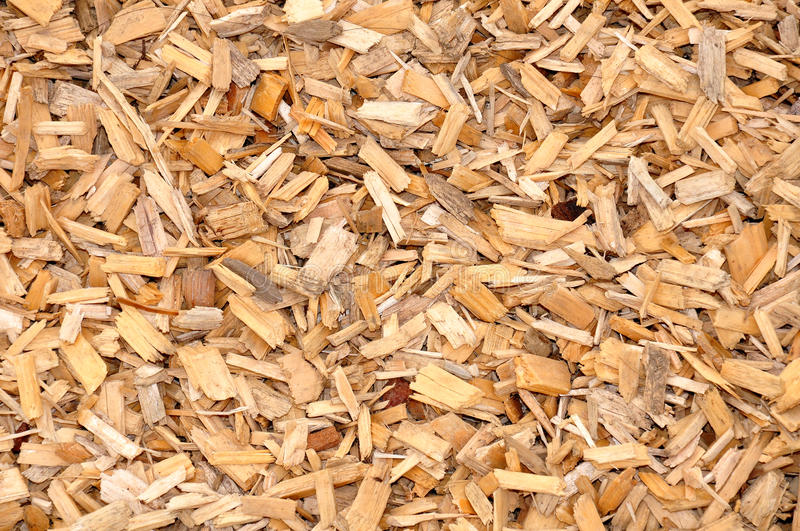 Download Wood chips stock photo. Image of timber, tree, heating - 10288032