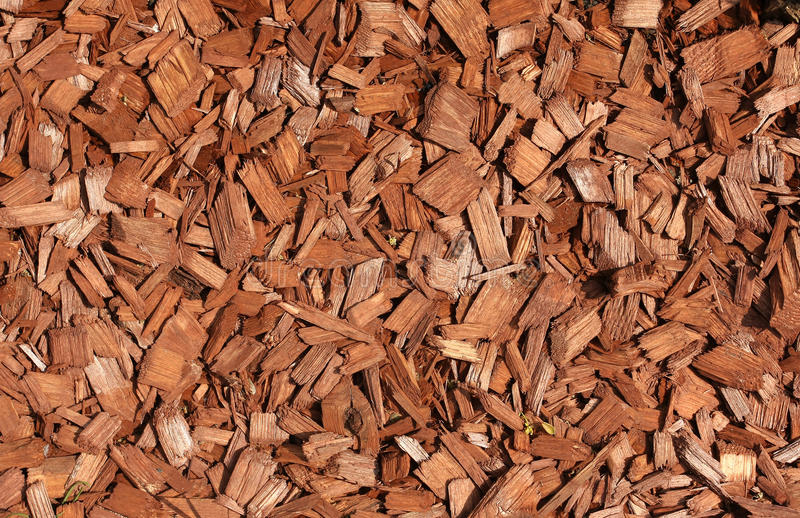 Wood chips. Detail suitable for backgrounds royalty free stock photos