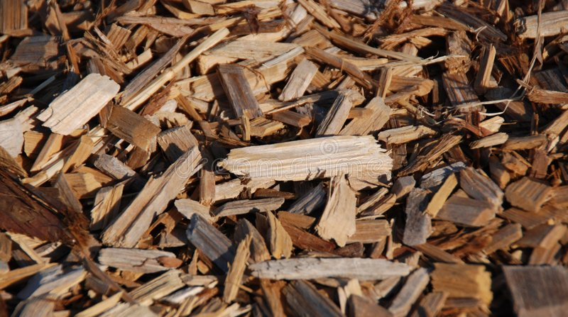 Wood Chips. A surface of multicolored wood chips with rich color stock image